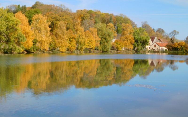 arthel-automne-credits-roselyne-paquet-1JPG##arthel_automne##Roselyne Paquet##