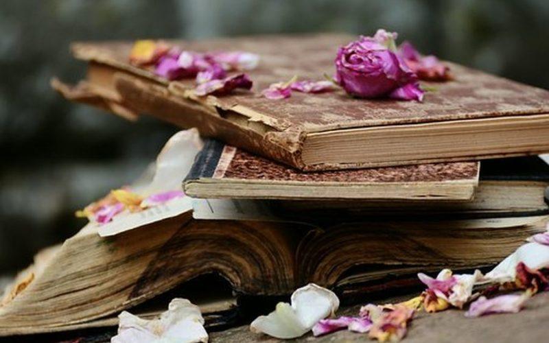 books-2447393-340jpgbooks-2447393-340pixabaycom##