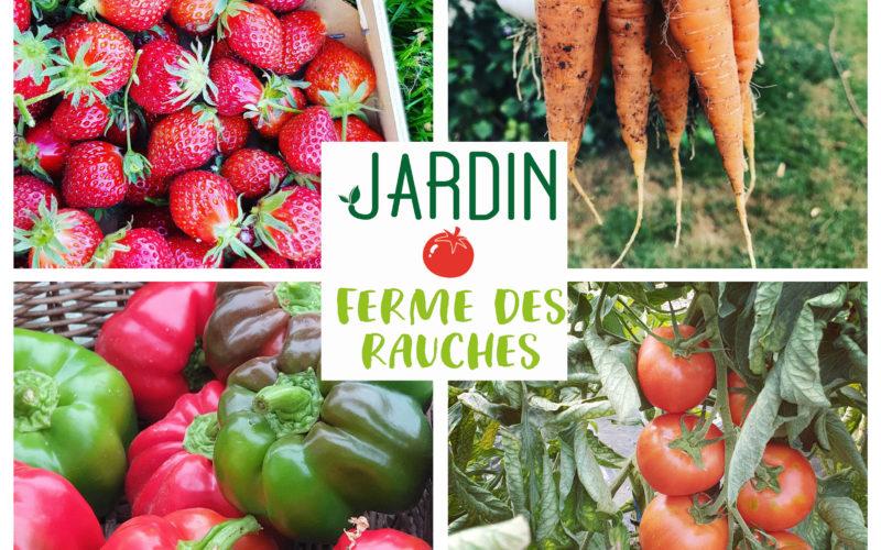 legumes-rauches-2jpg##legumes-rauches-2##Ferme des Rauches##