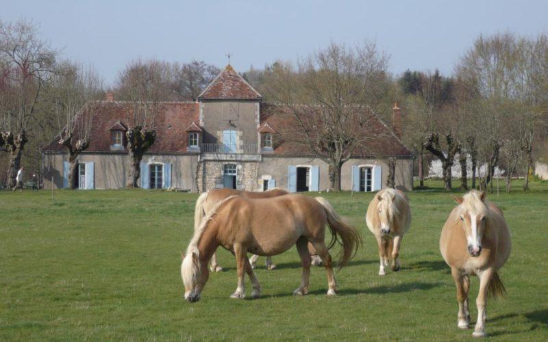 image-4734ca721feb40e4965f612070443511jpg##La Cuvellerie_1##Gîtes de France##