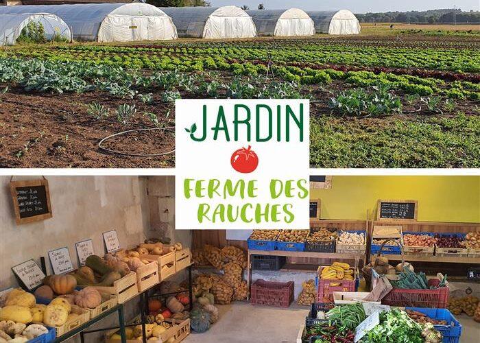 legumes-rauches-3-2jpg##legumes-rauches-3##La Ferme des Rauches ##