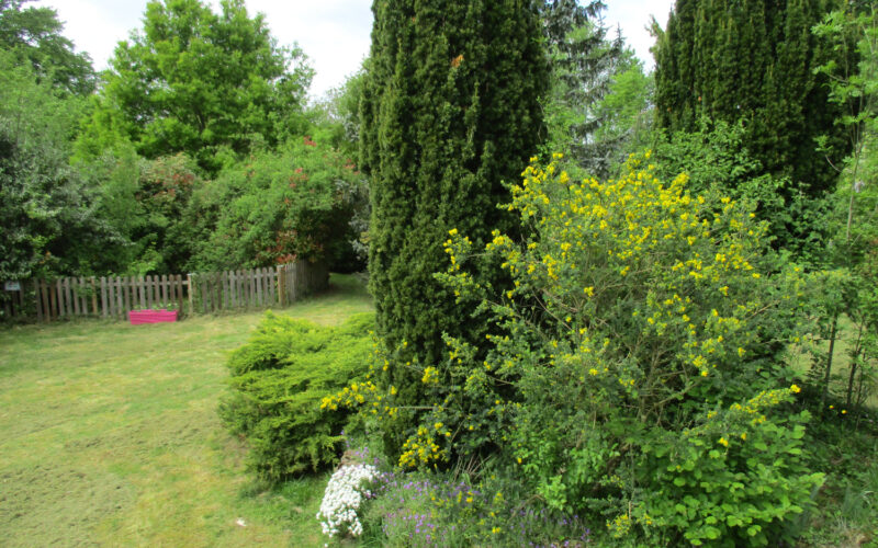 Jardin-de-Zola-jardinjpgJardin-de-Zola-jardin©CSèchepine##