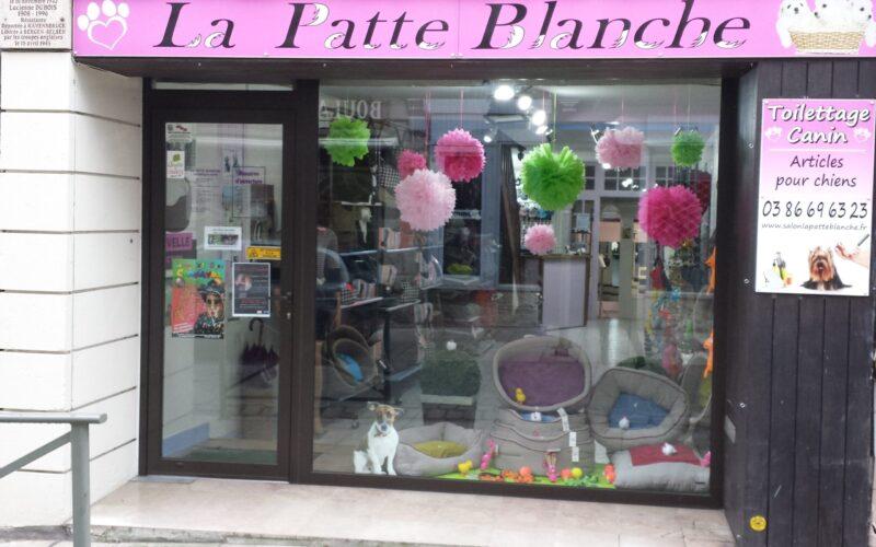 patte-blanchejpg##patte blanche##propriétaire##
